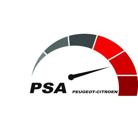 PSA BSI change KM by OBD